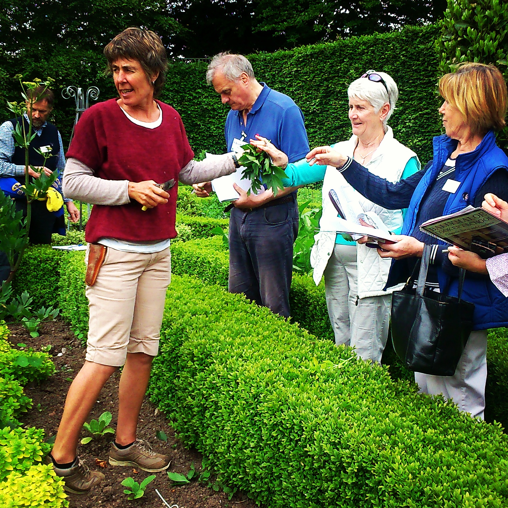 Gardening Workshops - Ballymaloe Cookery School