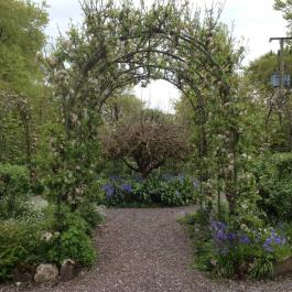 Trellis, The Ornamental Fruit Garden - Ballymaloe Cookery School