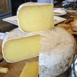 Cheese - Ballymaloe Cookery School