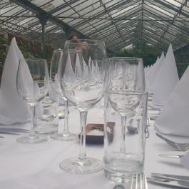 Long Table Dinner Place Settings