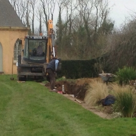 Trench dug to try to get rid of troublesome weed from herbaceous bed - Ballymaloe Cookery School