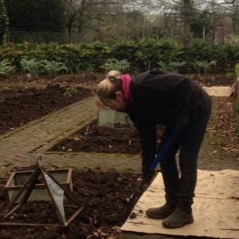 Eileen forking soil in the Kitchen Garden - Ballymaloe Cookery School