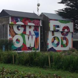 The latest art work towering over vegetables in the field near the glasshouses - Ballymaloe Cookery School
