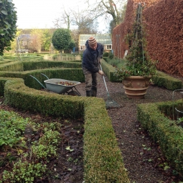 Bill raking leaves in the Herb Garden. Bucklers, Sorrel and Alpine Strawberry plants in the bed to the left - Ballymaloe Cookery School