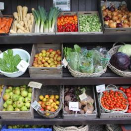 Organic Produce, The Farm Shop - Ballymaloe Cookery School