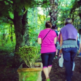 Foraging for Edible Wild Foods with Emer Fitzgerald