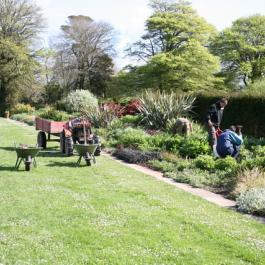 The Herbaceous Border - Ballymaloe Cookery School