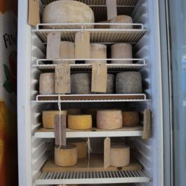 Cheese-Making - A Week at Ballymaloe Cookery School