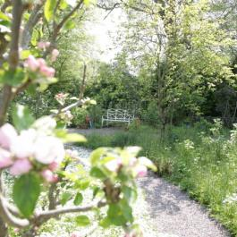 The Ornamental Fruit Garden - Ballymaloe Cookery School