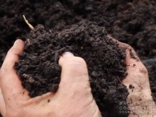 The Compost Cycle at Ballymaloe Cookery School
